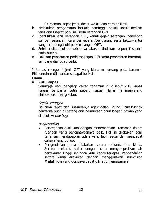 SOP Budidaya Philodendron S.O SK Mentan, tepat jenis, dosis, waktu dan cara aplikasi. b. Melakukan pengamatan berkala semi...