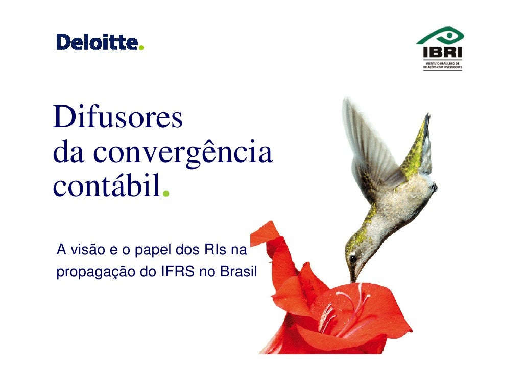 Difusores da convergência contábil. A visão e o papel dos RIs na propagação do IFRS no Brasil