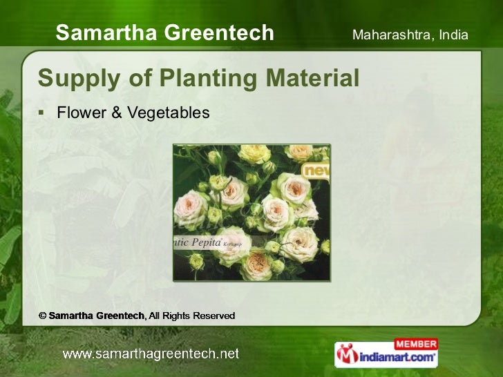 Supply of Planting Material <ul><li>Flower & Vegetables </li></ul>