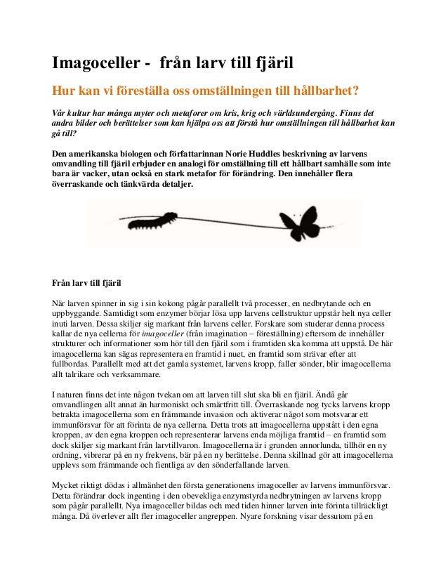 Imagoceller - från larv till fjäril Hur kan vi föreställa oss omställningen till hållbarhet? Vår kultur har många myter oc...
