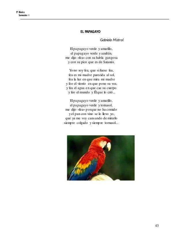 5º Básico Semestre I EL PAPAGAYO Gabriela Mistral El papagayo verde y amarillo, el papagayo verde y azafrán, me dijo «fea»...