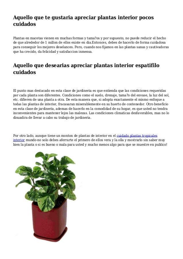aquello-que-te-gustaria-apreciar-plantas-interior-pocos-cuidados -1-638.jpg?cb=1396832137