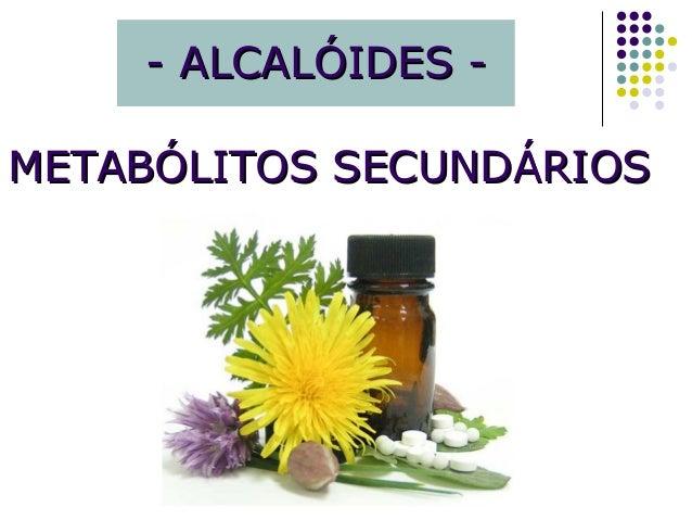 - ALCALÓIDES -- ALCALÓIDES - METABÓLITOS SECUNDÁRIOSMETABÓLITOS SECUNDÁRIOS