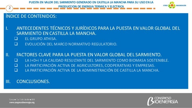 Puesta en valor del sarmiento generado en Castilla la Mancha para su uso en la producción de energía térmica y eléctrica Slide 3