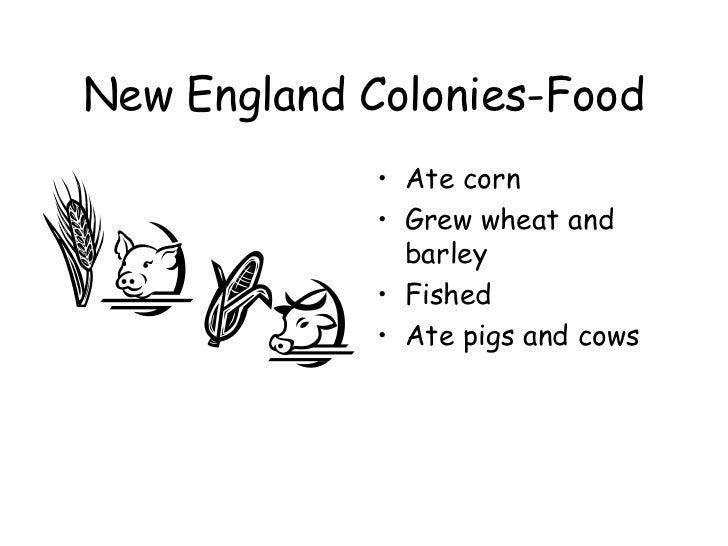 thirteen colonies and new england essay Chapters 5 and 6 the original 13 english colonies  thirteen colonies podcast: the new england colonies  background essay.