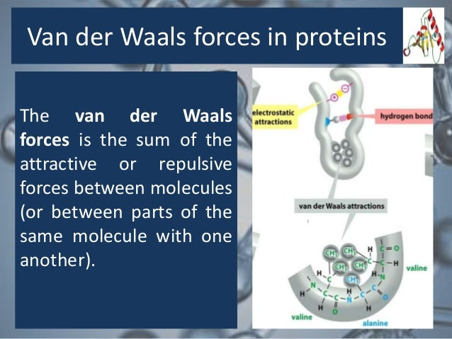 end group analysis of proteins pdf