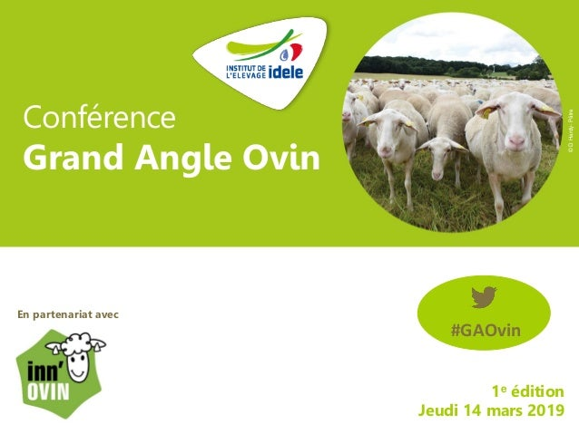 Conférence Grand Angle Ovin 1e édition Jeudi 14 mars 2019 En partenariat avec : #GAOvin ©DHardy-Pâtre