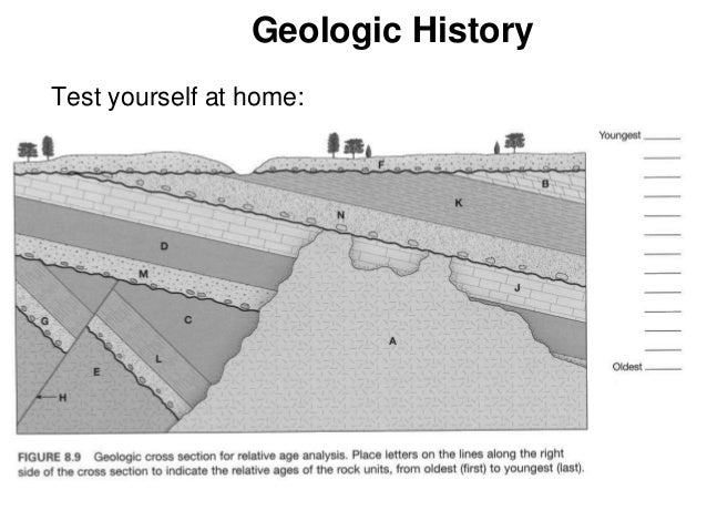13 geologictime forstudents arrange the layers in order from oldest to youngest. brainly geologic block diagram youngest to oldest