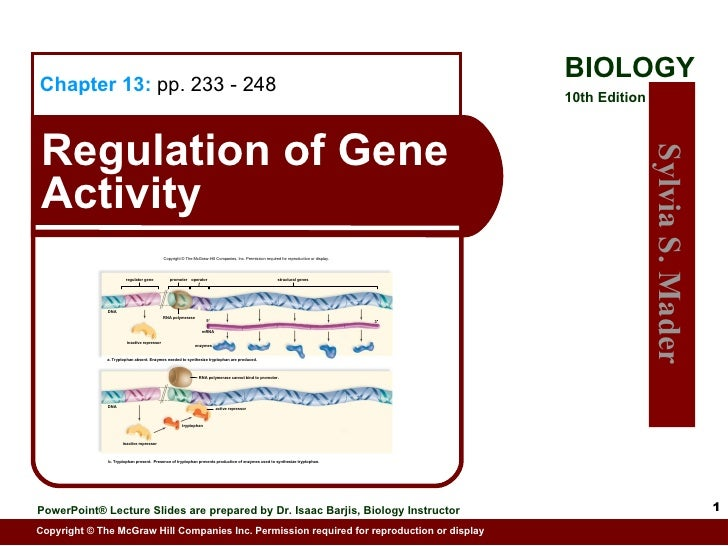 Copyright © The McGraw-Hill Companies, Inc. Permission required for reproduction or display. regulator gene promoter opera...