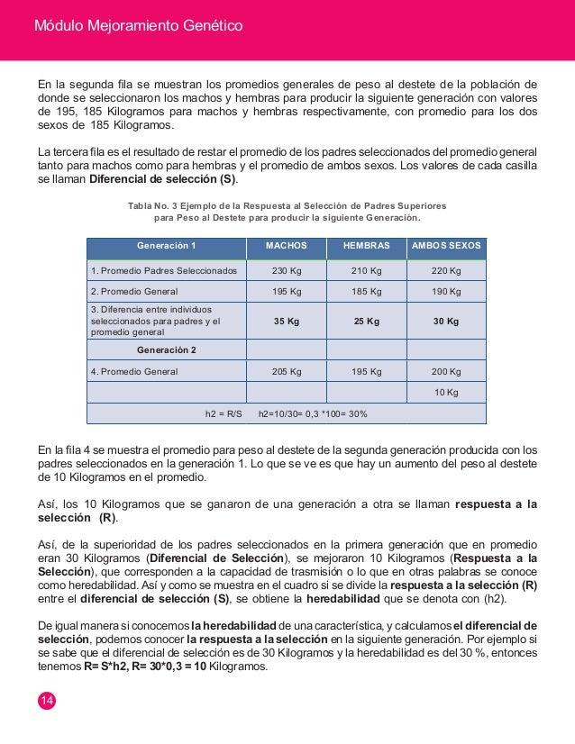 Módulo Mejoramiento Genético  15  UTILIZANDO HERRAMIENTAS EN MEJORAMIENTO GENÉTICO  Selección en Finca  Datos Productivos ...