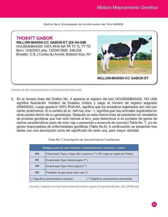 Módulo Mejoramiento Genético  24  Códigos para la raza Holstein de Enfermedades  BL Deficiencia de Adhesión Leucocitaria B...