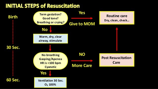 Yes Give to MOM Term gestation? Good tone? Breathing or crying? Birth 30 Sec. 60 Sec. Routine care Dry, clean, check… No W...