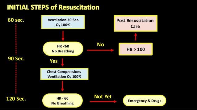 HR <60 No Breathing 60 sec. 90 Sec. 120 Sec. Yes Ventilation 30 Sec. O₂ 100% No Chest Compressions Ventilation O₂ 100% HB ...
