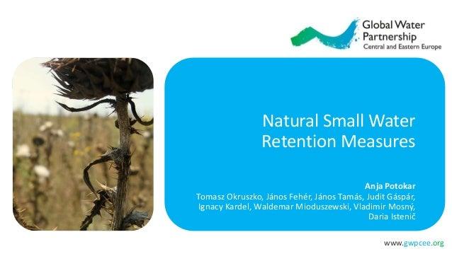 www.gwpcee.org Natural Small Water Retention Measures Anja Potokar Tomasz Okruszko, János Fehér, János Tamás, Judit Gáspár...