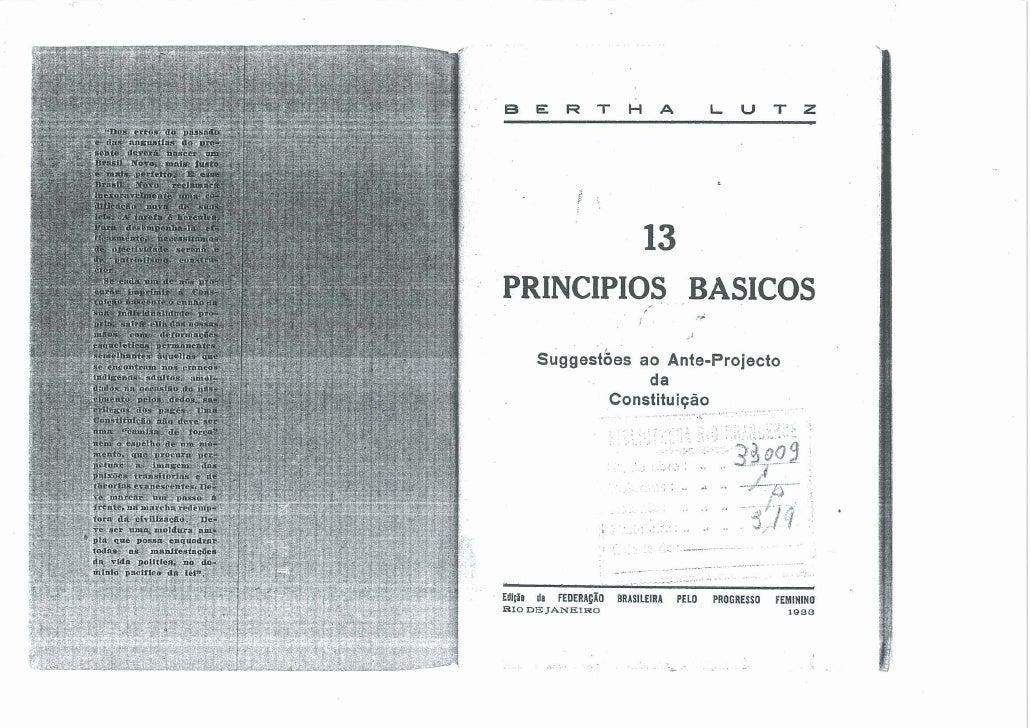 13 Princípios Básicos para a Constituição do Brasil