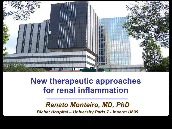 New therapeutic approaches for renal inflammation Renato Monteiro, MD, PhD Bichat Hospital – University Paris 7 - Inserm U...