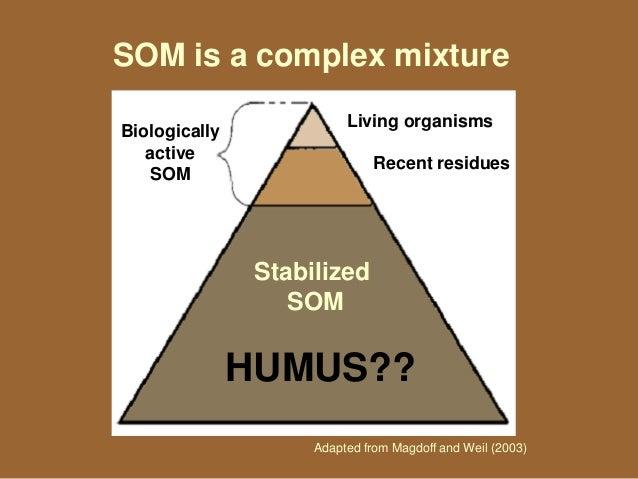 Understanding soil organic matter for Soil organic matter pdf