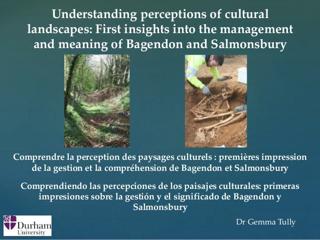 { Understanding perceptions of cultural landscapes: First insights into the management and meaning of Bagendon and Salmons...