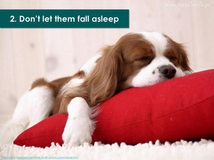 2. Don't let them fall asleephttp://www.tapeciarnia.pl/40544_slodki_spiacy_szczeniaczek.html