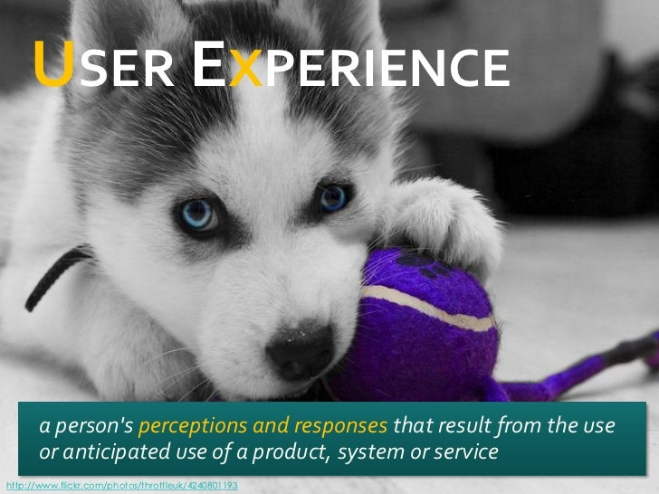 USER EXPERIENCE      a persons perceptions and responses that result from the use      or anticipated use of a product, sy...