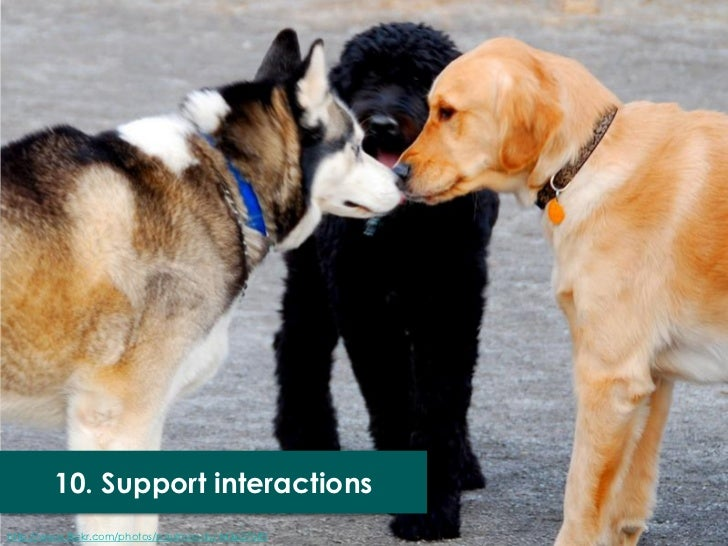 10. Support interactionshttp://www.flickr.com/photos/paulmoody/443627085