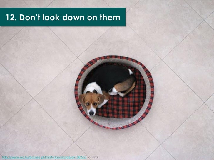 12. Don't look down on themhttp://www.sxc.hu/browse.phtml?f=download&id=1089221 Manita