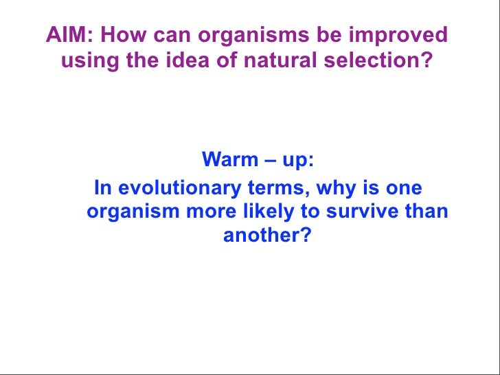 AIM: How can organisms be improved  using the idea of natural selection?                   Warm – up:     In evolutionary ...