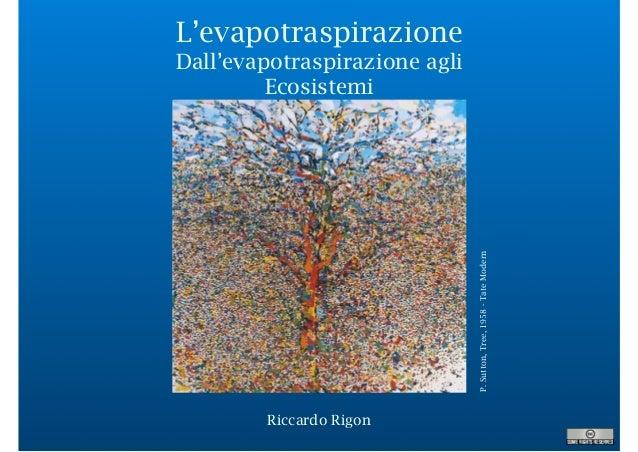 L'evapotraspirazione Dall'evapotraspirazione agli Ecosistemi P.Sutton,Tree,1958-TateModern Riccardo Rigon