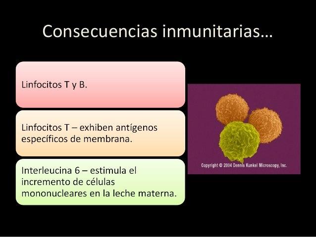 Inmunología de la leche materna…  Inmunoglobulinas. IgA (mayor en calostro), protección específica contra agentes del tra...