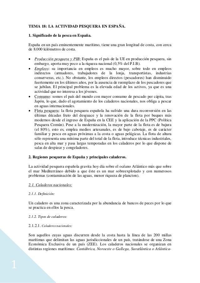 1 TEMA 18: LA ACTIVIDAD PESQUERA EN ESPAÑA. 1. Significado de la pesca en España. España en un país eminentemente marítimo...