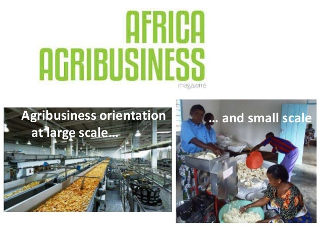 Agribusiness orientation at large scale… … and small scale