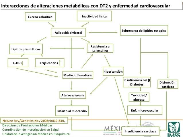 La hipertrigliceridemia como factor de riesgo
