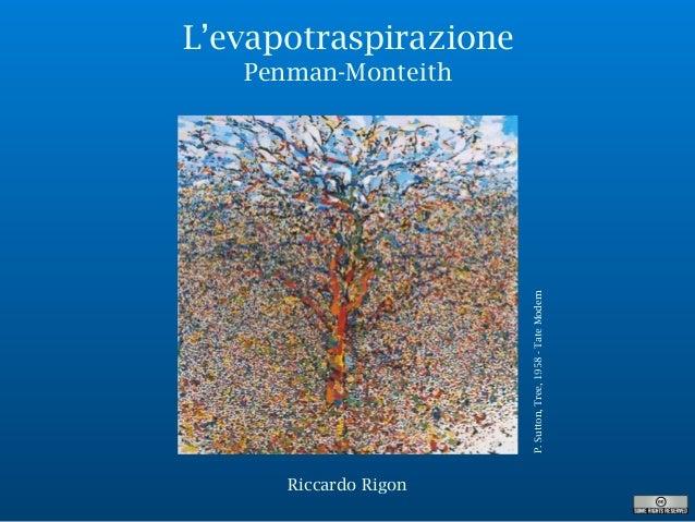 L'evapotraspirazione Penman-Monteith P.Sutton,Tree,1958-TateModern Riccardo Rigon