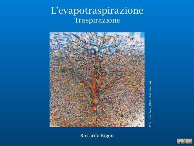 Riccardo Rigon L'evapotraspirazione Traspirazione P.Sutton,Tree,1958-TateModern Riccardo Rigon