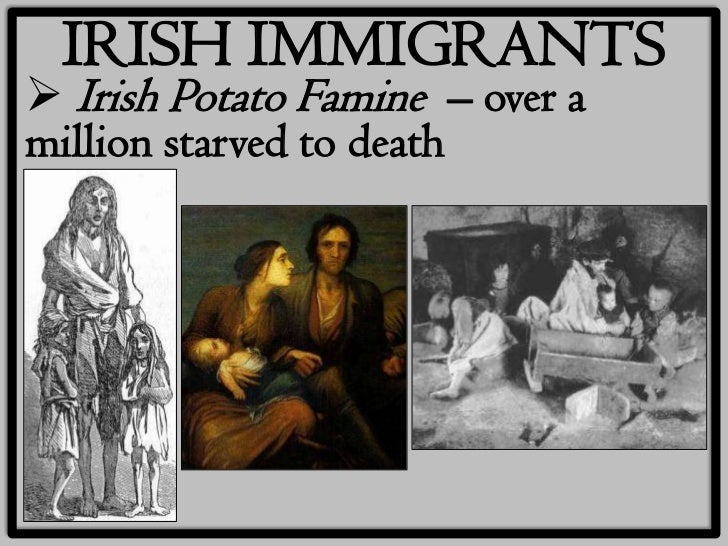german and irish immigration comparison While german and irish immigration of the 1840s and 1850s was similar in many ways, some differences were also evident german and irish immigrants, native of.