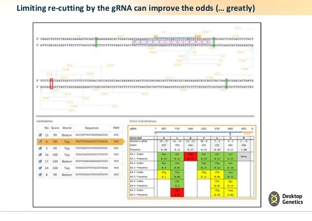 Limiting re-cutting by the gRNA can improve the odds (… greatly)