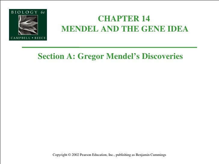 CHAPTER 14  MENDEL AND THE GENE IDEA Copyright © 2002 Pearson Education, Inc., publishing as Benjamin Cummings Section A: ...