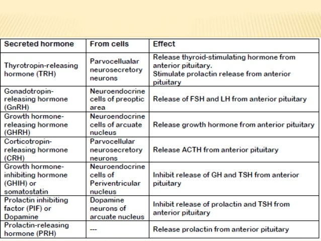 pancreatic endocrine hormones essay Short essay on the endocrine system  pancreas secretes the hormone called insulin the function of insulin hormone is to lower the blood sugar level (or blood .