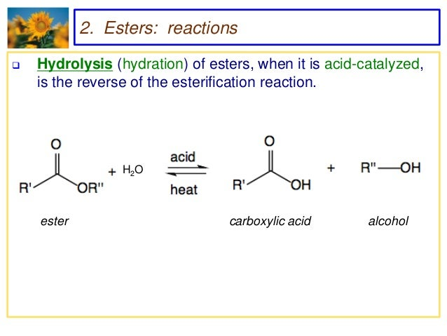 the equilibrium constant of an ester hydrolysis reaction The equilibrium shift of enzyme-catalyzed hydrolysis/synthesis reactions in  favor  the dipeptide and ester equilibrium concentrations increase when the  water  they are true thermodynamic equilibrium constants, each related to a  single,.