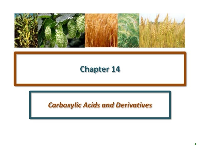 Chapter 14Carboxylic Acids and Derivatives                                   1