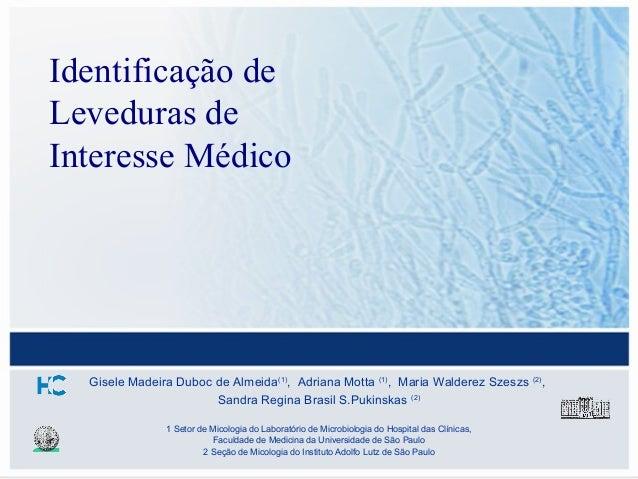 Identificação deLeveduras deInteresse Médico  Gisele Madeira Duboc de Almeida(1), Adriana Motta (1), Maria Walderez Szeszs...