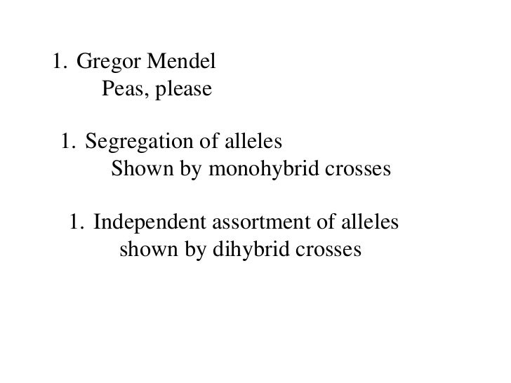<ul><li>Gregor Mendel </li></ul><ul><ul><li>Peas, please </li></ul></ul><ul><li>Segregation of alleles </li></ul><ul><ul><...
