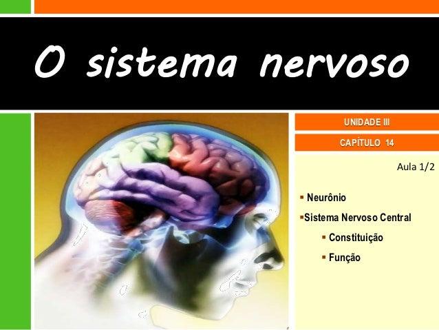 O sistema nervoso                     UNIDADE III                    CAPÍTULO 14                                   Aula 1/...