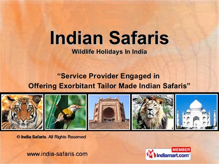 "Indian Safaris Wildlife Holidays In India "" Service Provider Engaged in  Offering Exorbitant Tailor Made Indian Safaris"""