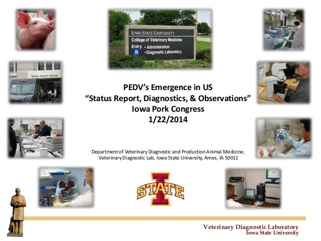 "PEDV's Emergence in US ""Status Report, Diagnostics, & Observations"" Iowa Pork Congress 1/22/2014  Department of Veterinary..."