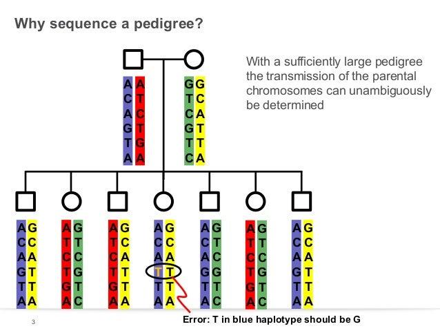 Why sequence a pedigree?  AA CT AC GT TG AA  AG CC AA GT TT AA 3  AG TT CC TG GT AC  AG TC CA TT GT AA  GG TC CA GT TT CA ...