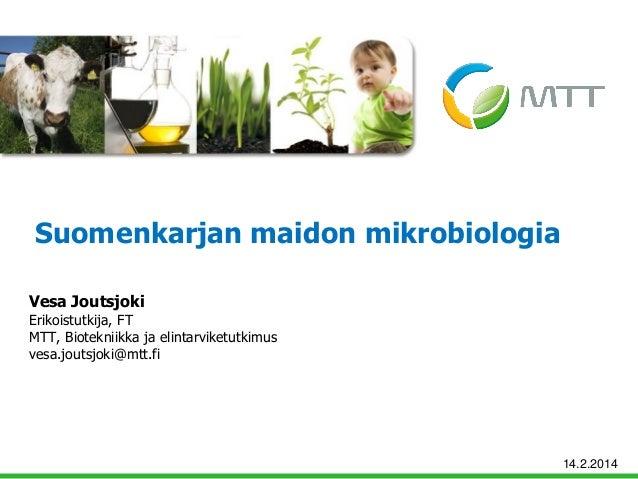 Suomenkarjan maidon mikrobiologia Vesa Joutsjoki  Erikoistutkija, FT MTT, Biotekniikka ja elintarviketutkimus vesa.joutsjo...