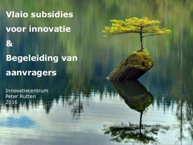 Innovatiecentrum Peter Rutten 2016 Vlaio subsidies voor innovatie & Begeleiding van aanvragers