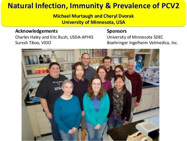 Natural Infection, Immunity & Prevalence of PCV2 Michael Murtaugh and Cheryl Dvorak University of Minnesota, USA Acknowled...