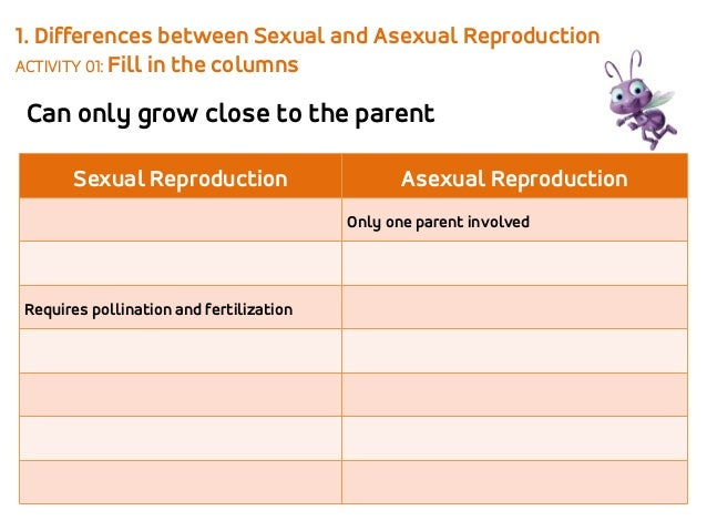 Asexual and sexual reproduction in plants video 2nd